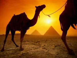 Egypt (6)