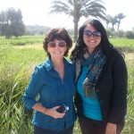 Fayoum Oasis Day Tour from Cairo