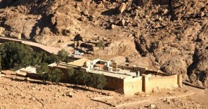 saint catherine monastery day tour