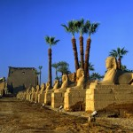 Luxor custom tours