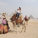 Cairo Day Tour from Alexandria Port